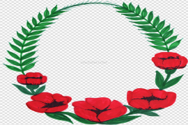 Oval Flowers Frame PNG