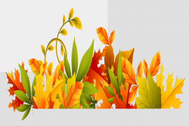Fall Harvest PNG File