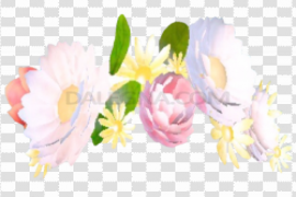 Snapchat Flower Crown PNG File
