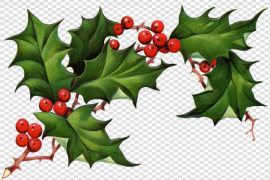 Christmas Elements PNG Pic