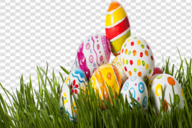 Grass Easter Egg PNG Photo