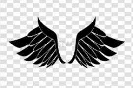 Half Wings PNG Clipart