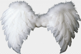Realistic Angel Wings PNG Pic