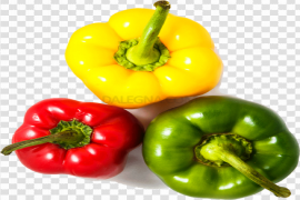 Capicum Green And Red Chilli PNG Photos