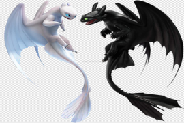 Toothless Night Fury PNG Photos
