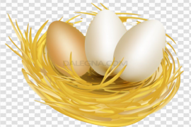 White Easter Egg PNG Free Download