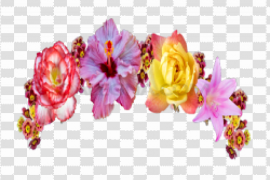 Snapchat Flower Crown PNG Picture