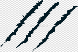 Claw Scratches PNG Image