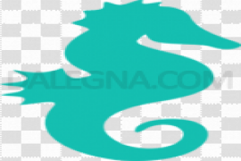 Cute Seahorse PNG Picture