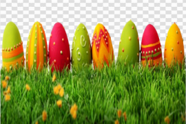 Grass Easter Egg PNG Image