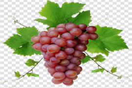 Red Grapes PNG Photos
