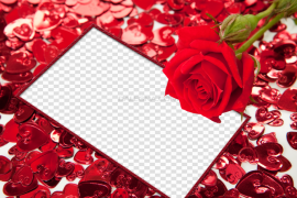 Red Flower Frame PNG HD