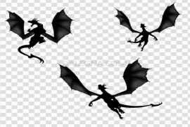 Flying Dragon PNG Transparent Picture