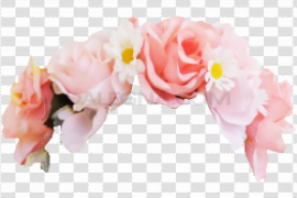 Snapchat Flower Crown PNG Photo