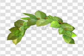 Snapchat Flower Crown PNG Image