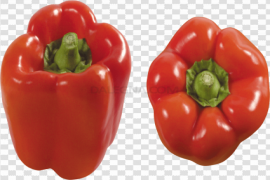Bell Pepper Red Vegetable PNG