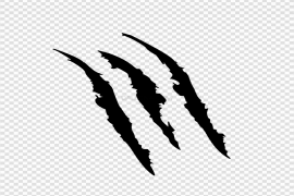 Claw Scratches Transparent PNG