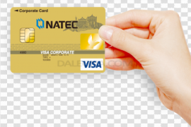 Male Hand Holding Credit Card PNG File