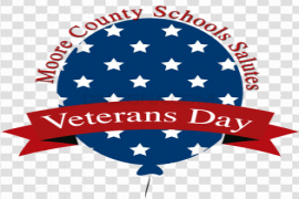Veterans Day PNG Image
