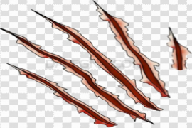 Claw Scratches PNG HD