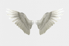 Angel Wings Transparent Background