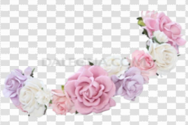 Snapchat Flower Crown PNG Photos
