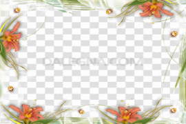 Abstract Frame Download PNG Image