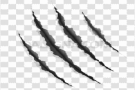 Claw Scratches PNG Pic