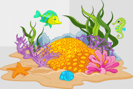 Vector Coral Reef PNG Image