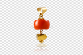 Red Coral Jewellery PNG Image