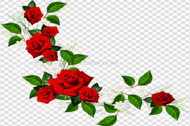 Red Flower Frame PNG Pic