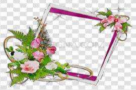 Flowers Frame Vector Clipart PNG