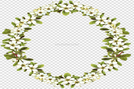 Circle Flower Frame Oval PNG