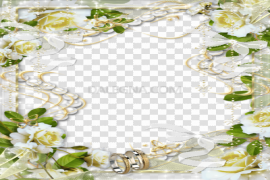 White Flowers Frame PNG