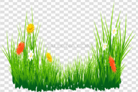 Easter Egg Grass PNG Image