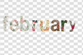 February Background PNG