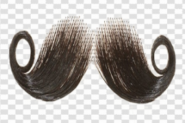 Fake Moustache PNG Free Download