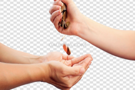 Give Transparent PNG