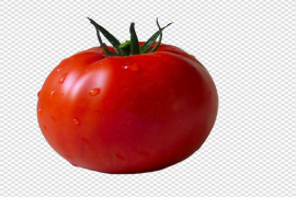 Red Fresh Tomatoes Bunch PNG Transparent Image