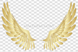 Angel Halo Wings PNG File