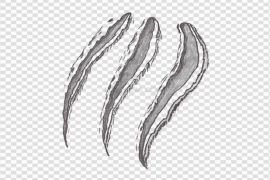 Claw Scratches PNG File