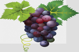Red Grapes PNG File