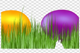 Grass Easter Egg PNG Pic