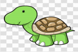 Cute Turtle PNG Image