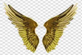 Angel Wings Transparent PNG