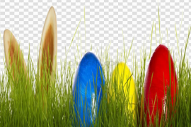 Easter Egg Grass PNG HD