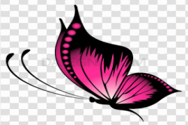 Pink Butterfly PNG File