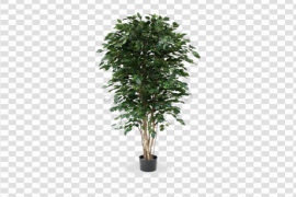 Artificial Tree PNG File