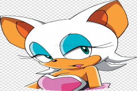Sonic X Rouge The Bat Series Transparent Background