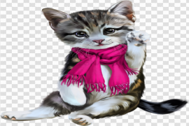 Cat Christmas PNG Background Image